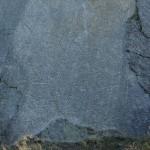 Fossile Wellenrippel Marken in Dudley